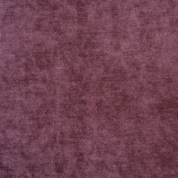 Zaragoza Fabrics | Zaragoza - Grape | Tejidos para cortinas | Designers Guild