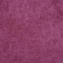 Zaragoza Fabrics | Zaragoza - Crocus | Tessuti tende | Designers Guild
