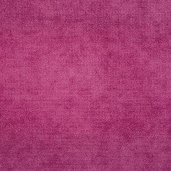 Zaragoza Fabrics   Zaragoza - Cassis   Vorhangstoffe   Designers Guild