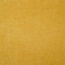 Zaragoza Fabrics | Zaragoza - Dandelion | Curtain fabrics | Designers Guild