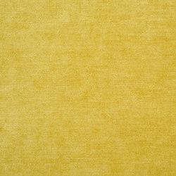 Zaragoza Fabrics | Zaragoza - Gold | Curtain fabrics | Designers Guild