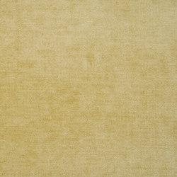 Zaragoza Fabrics | Zaragoza - Honey | Tessuti tende | Designers Guild