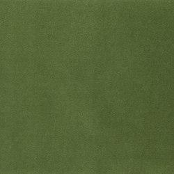 Varese Fabrics | Varese - Grass | Curtain fabrics | Designers Guild