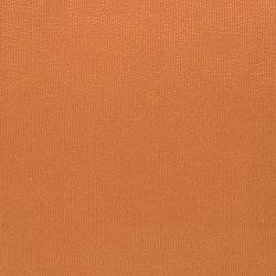Striato Fabrics | Striato - Zinnia | Curtain fabrics | Designers Guild