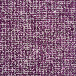 Mavone Fabrics | Mavone - Damson | Tejidos para cortinas | Designers Guild