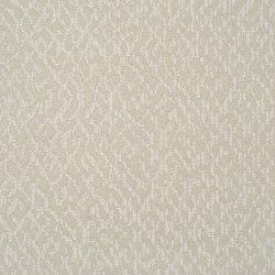 Mavone Fabrics | Versa - Oyster | Curtain fabrics | Designers Guild