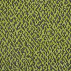 Mavone Fabrics | Versa - Moss | Tessuti tende | Designers Guild