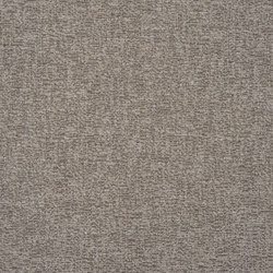 Mavone Fabrics   Enza - Birch   Tissus pour rideaux   Designers Guild