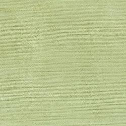 Mesilla Fabrics | Mesilla - Lime | Tissus pour rideaux | Designers Guild