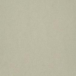Satinato II Fabrics | Satinato - 1555/06 | Curtain fabrics | Designers Guild