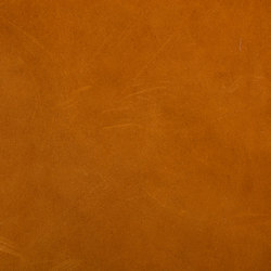 Tuscany Brandy | Natural leather wall tiles | Alphenberg Leather