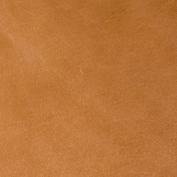 Tuscany Sabbia | Natural leather wall tiles | Alphenberg Leather