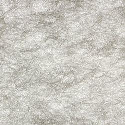 GECKO CRYPTA II - 5031 | Tejidos para cortinas | Création Baumann