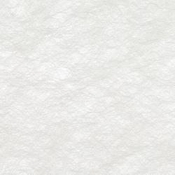 GECKO CRYPTA II - 5034 | Tejidos para cortinas | Création Baumann