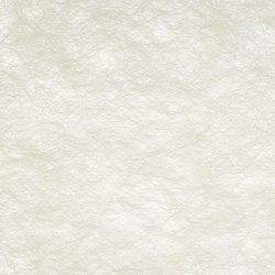 GECKO CRYPTA II - 5035 | Tejidos para cortinas | Création Baumann