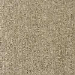 Naturally III Fabrics | Genova - Silver Birch | Curtain fabrics | Designers Guild