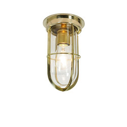 7203 Ship's Companionway With Guard, Polished Brass, Clear Glass | General lighting | Davey Lighting Limited