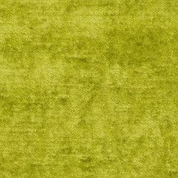 Nabucco Fabrics   Appia - Moss   Curtain fabrics   Designers Guild