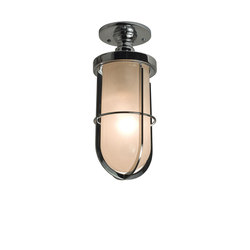 7204 Weatherproof Ship's Well Glass Ceiling, Chrome, Frosted Glass | General lighting | Davey Lighting Limited