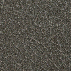 Gusto Anthracite | Natural leather | Alphenberg Leather