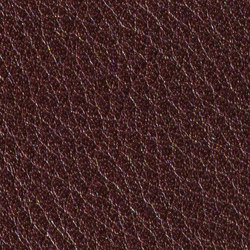 Gusto Aubergine | Cuero natural | Alphenberg Leather