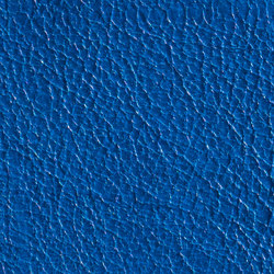 Gusto Blue | Vera pelle | Alphenberg Leather