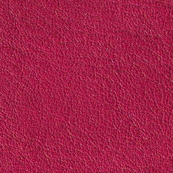 Gusto Fuchsia | Natural leather | Alphenberg Leather