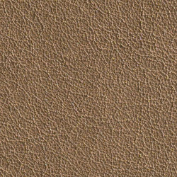 Gusto Taupe | Natural leather | Alphenberg Leather