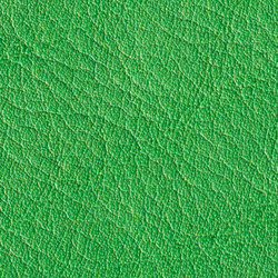 Gusto Green | Natural leather | Alphenberg Leather