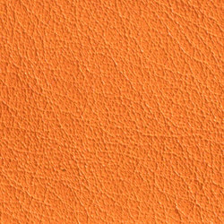 Gusto Orange | Vera pelle | Alphenberg Leather