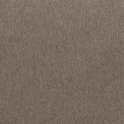 Mesilla Fabrics | Savanna - Birch | Curtain fabrics | Designers Guild