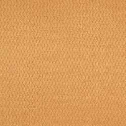 Moray Fabrics | Ellon - Sienna | Tissus pour rideaux | Designers Guild