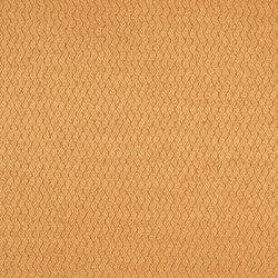 Moray Fabrics | Ellon - Sienna | Curtain fabrics | Designers Guild