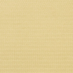 Moray Fabrics | Ellon - Champagne | Curtain fabrics | Designers Guild