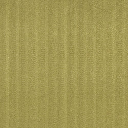 Moray Fabrics | Crawton - Moss | Tessuti tende | Designers Guild