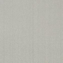 Moray Fabrics | Moray - Silver | Curtain fabrics | Designers Guild