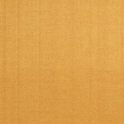 Moray Fabrics | Moray - Sienna | Curtain fabrics | Designers Guild