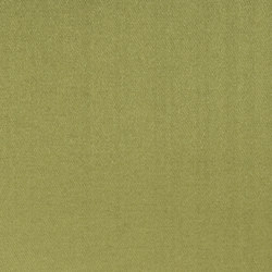 Moray Fabrics | Moray - Moss | Tejidos para cortinas | Designers Guild