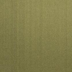 Moray Fabrics | Moray - Forest | Curtain fabrics | Designers Guild