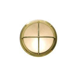 7226 Brass Bulkhead With Cross Guard, Polished Brass | Iluminación general | Davey Lighting Limited