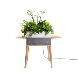 Bloombox | Pots de fleurs | Greenworks