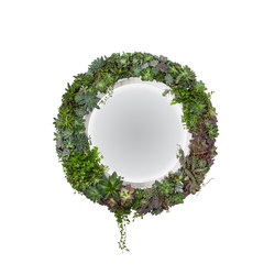 Plant Mirror | Espejos de pared | Greenworks