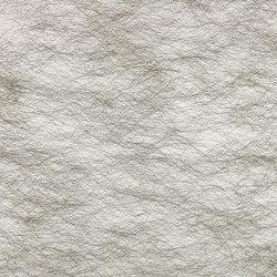 SPIDER FR II R - 7031 | Drapery fabrics | Création Baumann