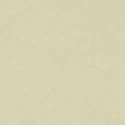 Wall Textures III 424256 | Revestimientos de paredes / papeles pintados | Rasch Contract