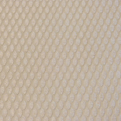 Natural Impression Points | Fabrics | Rasch Contract