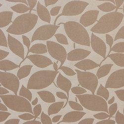 Pearl of Beauty Leavy | Curtain fabrics | Rasch Contract