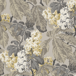 Cassata 256511 | Wall coverings | Rasch Contract