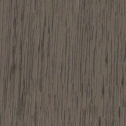 Verity Plis Longe 600390 | Wallcoverings | Rasch Contract