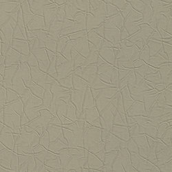 Verity Steel Crush 600246 | Wallcoverings | Rasch Contract