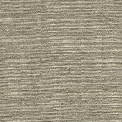 Vista 5 213842 | Drapery fabrics | Rasch Contract